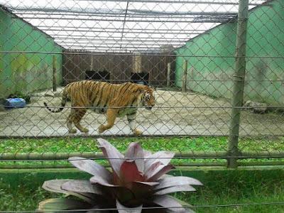 Zoológico de Balneário Camboriú