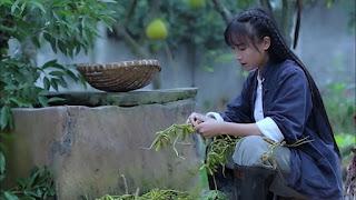 Tên tuổi của Li Ziqi ngày càng nổi tiếng sau khi đạt kỷ lục Guinness thế giới về việc đạt được nhiều người đăng ký nhất cho các kênh tiếng Trung trên YouTube.