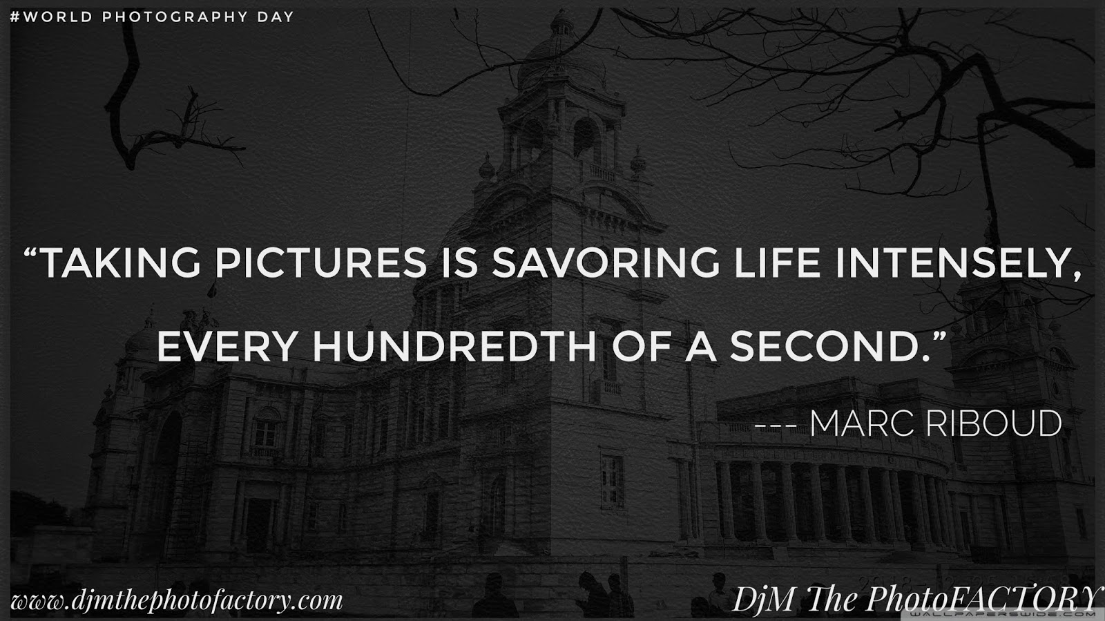 14 Best Quotes of photographer