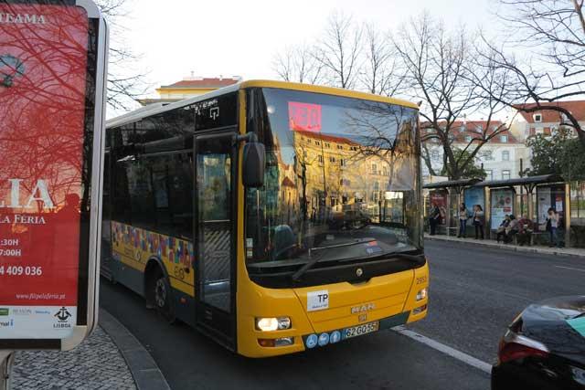 730 Lisbon Bus