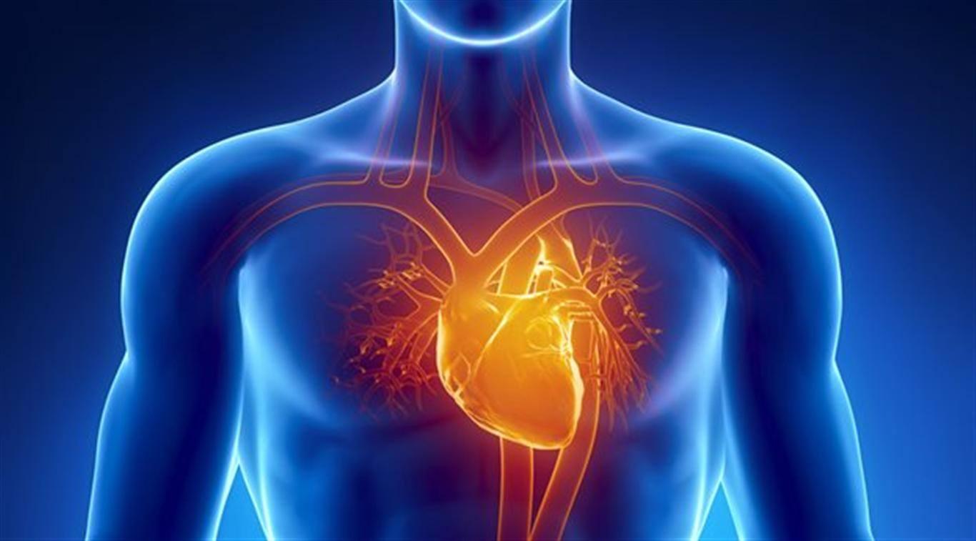 EM Didactic: Allergic Myocardial Infarction - Kounis Syndrome