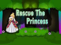 Top10NewGames - Top10 Rescue The Princess