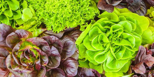 side effects of eating green leafy vegetables