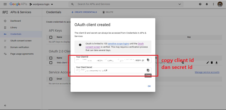 cara membuat login google di wordpress