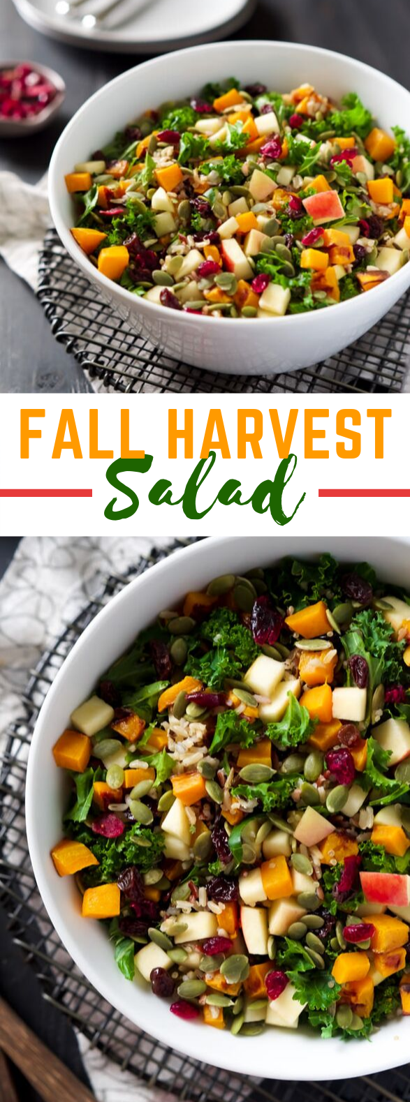 FALL HARVEST SALAD WITH APPLE CIDER VINAIGRETTE #vegetarian #healthy