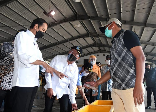 Bertemu Nelayan, Presiden Janjikan Pengerukan di Sekitar Pelabuhan Perikanan Nusantara Brondong