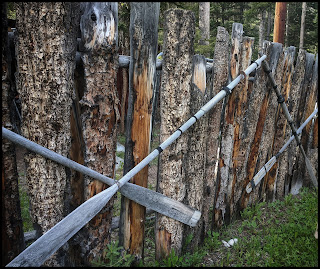 Old Wooden Boat Ores on the fence from around the 1930's.
