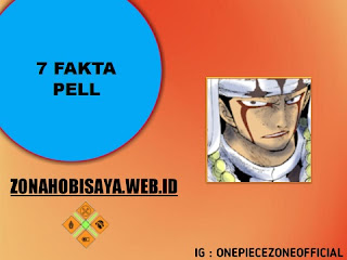 Fakta Pell One Piece
