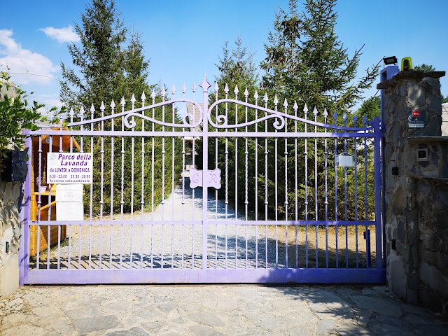 cancello viola
