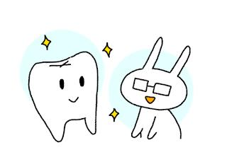 ©さんがつの歯科矯正を始めます 歯科矯正患者が調べた事と知った事