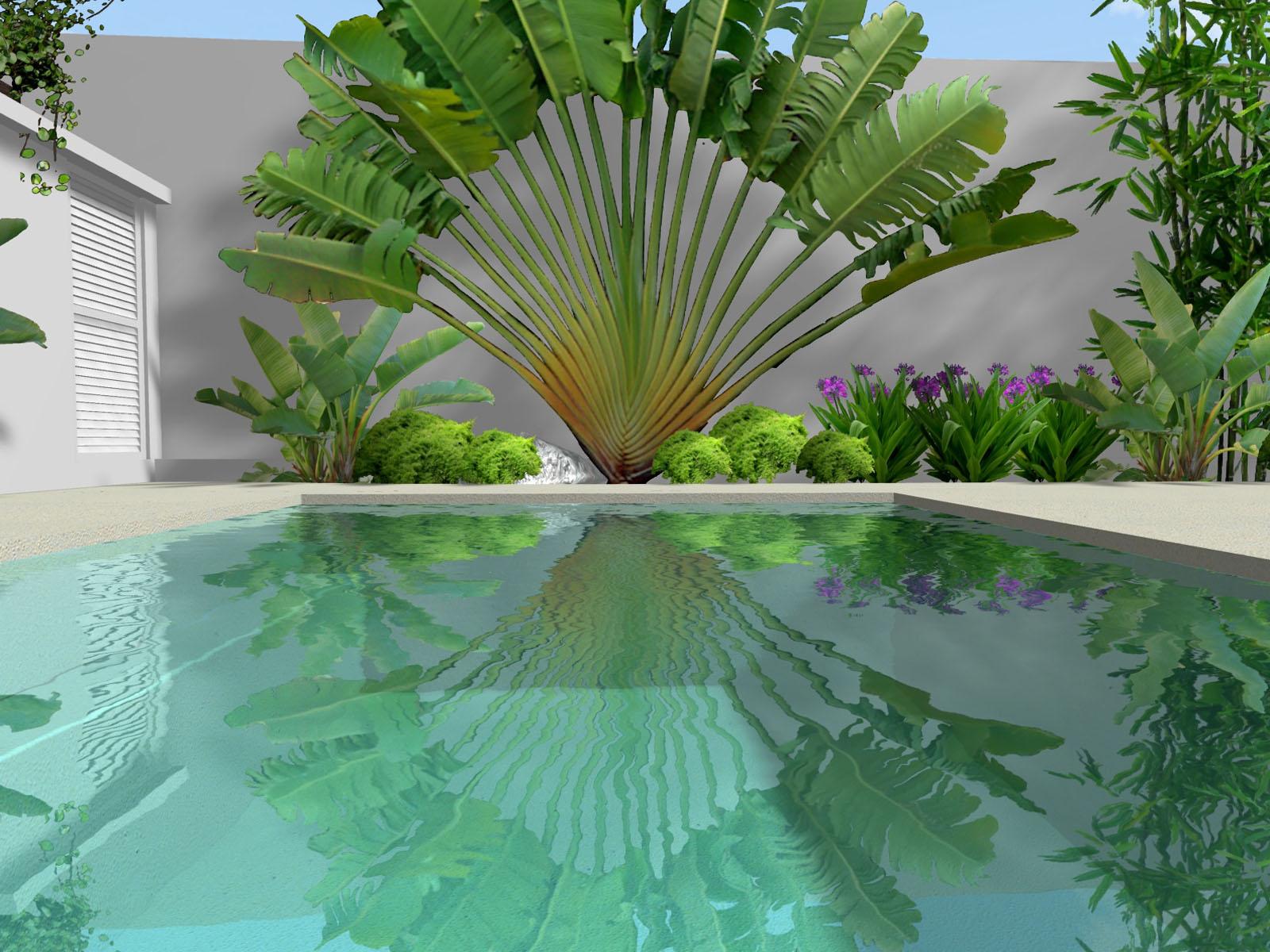 diseño de un pequeño jardin tropical de lujo