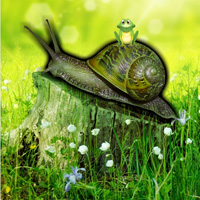 Games2Rule Snail Forest E…