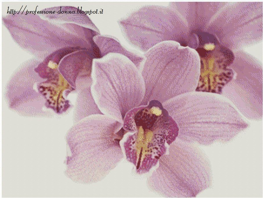 Professione donna schemi punto croce orchidea 1 for Costo orchidea
