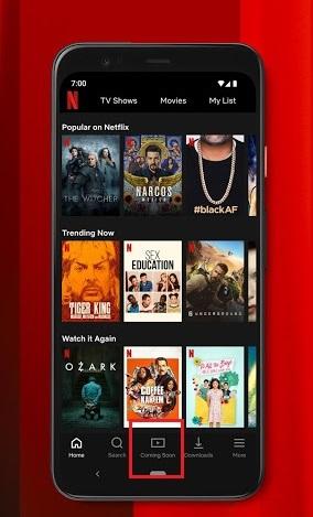 Latest Netflix upcoming Movies