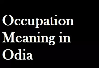Occupation Odia Meaning Occupation Meaning in Oriya