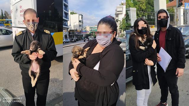 Τρία αδεσποτάκια από το Ναύπλιο βρήκαν νέες οικογένειες στην Αθήνα