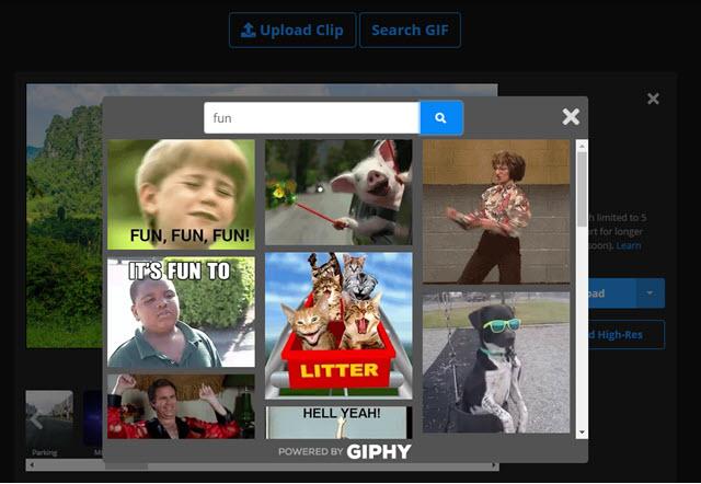 ricerca delle GIF su Giphy
