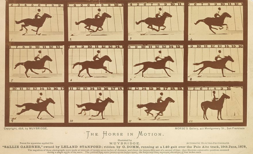 #45 The Horse In Motion, Eadweard Muybridge, 1878 - Top 100 Of The Most Influential Photos Of All Time