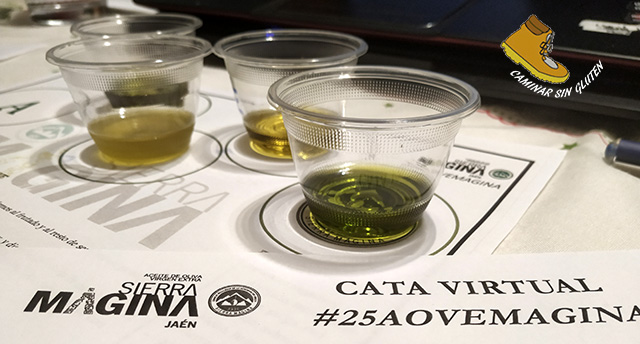 CATA VIRTUAL #25AOVEMAGINA
