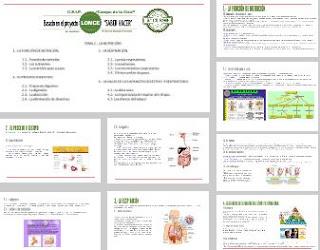 https://prezi.com/fxonkapbcbop/c-naturales-5o-curso-tema-2-la-nutricion-i/