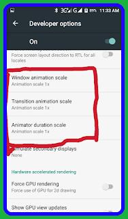 How to active developer optionst