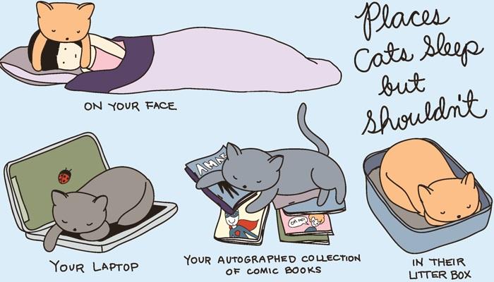 10 Ilustrasi Lucu Ini Menunjukkan Bagaimana Kehidupan Pecinta Kucing