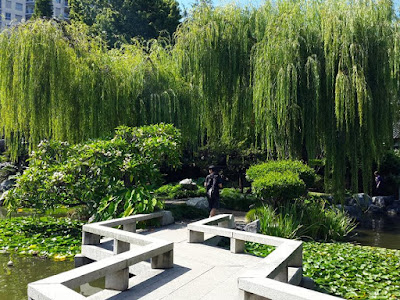 13D12N Australia Trip: Chinese Garden of Friendship, Darling Harbour (part 2)