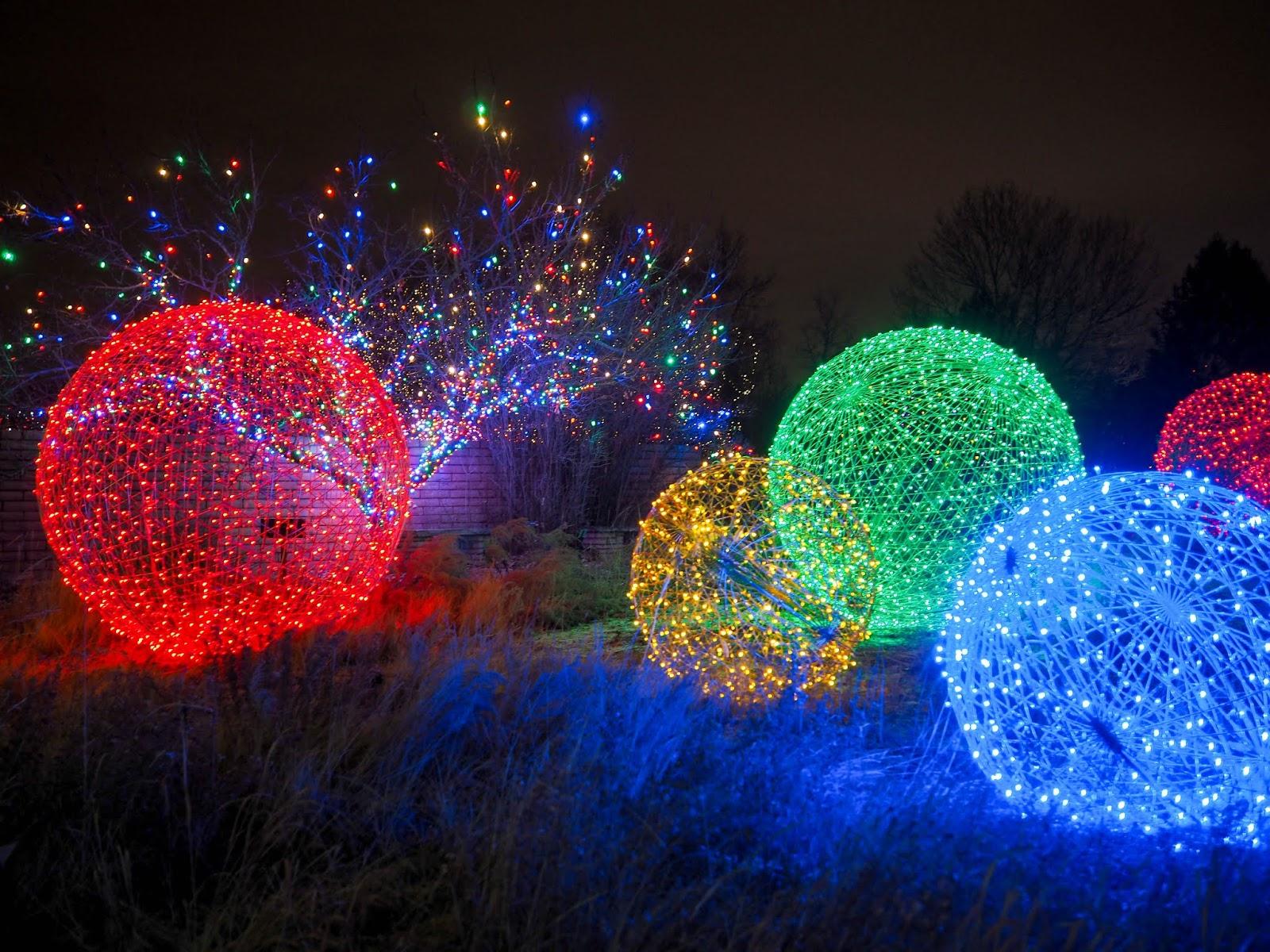 PC263646 - Blossoms Of Light Denver Botanic Gardens December 10