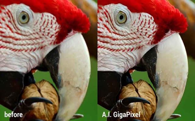 Topaz Gigapixel AI 4.1.0 F.u.l.l - Phần mềm tăng kích thước ảnh lên 600%