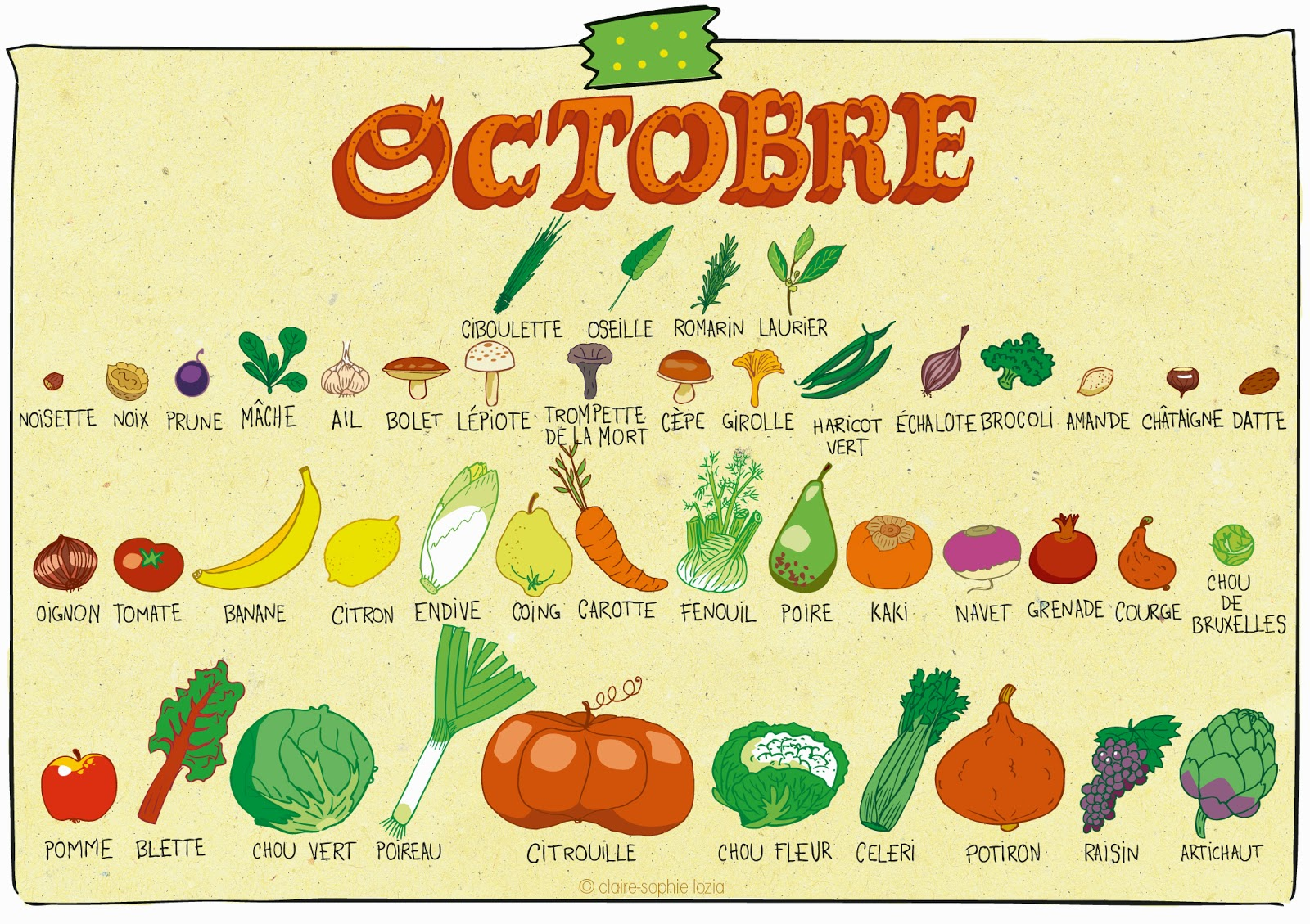 octobre calendrier des fruits et l gumes pissenlit. Black Bedroom Furniture Sets. Home Design Ideas
