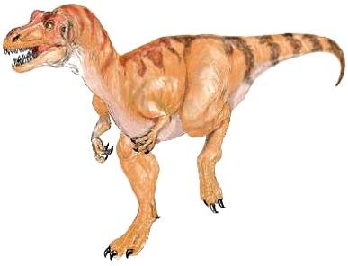 Dibujo de un Sinraptor para niños