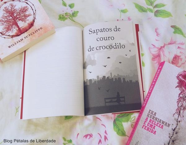 Resenha, livro, Paris-para-um-e-outros-contos, Jojo-Moyes, intrinseca, opiniao, critica, blog-literario, capa, fotos, trechos, citação