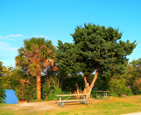 Campground at Long Point Park in Florida  copyright by dearmissmermaid.com Dear Miss Mermaid