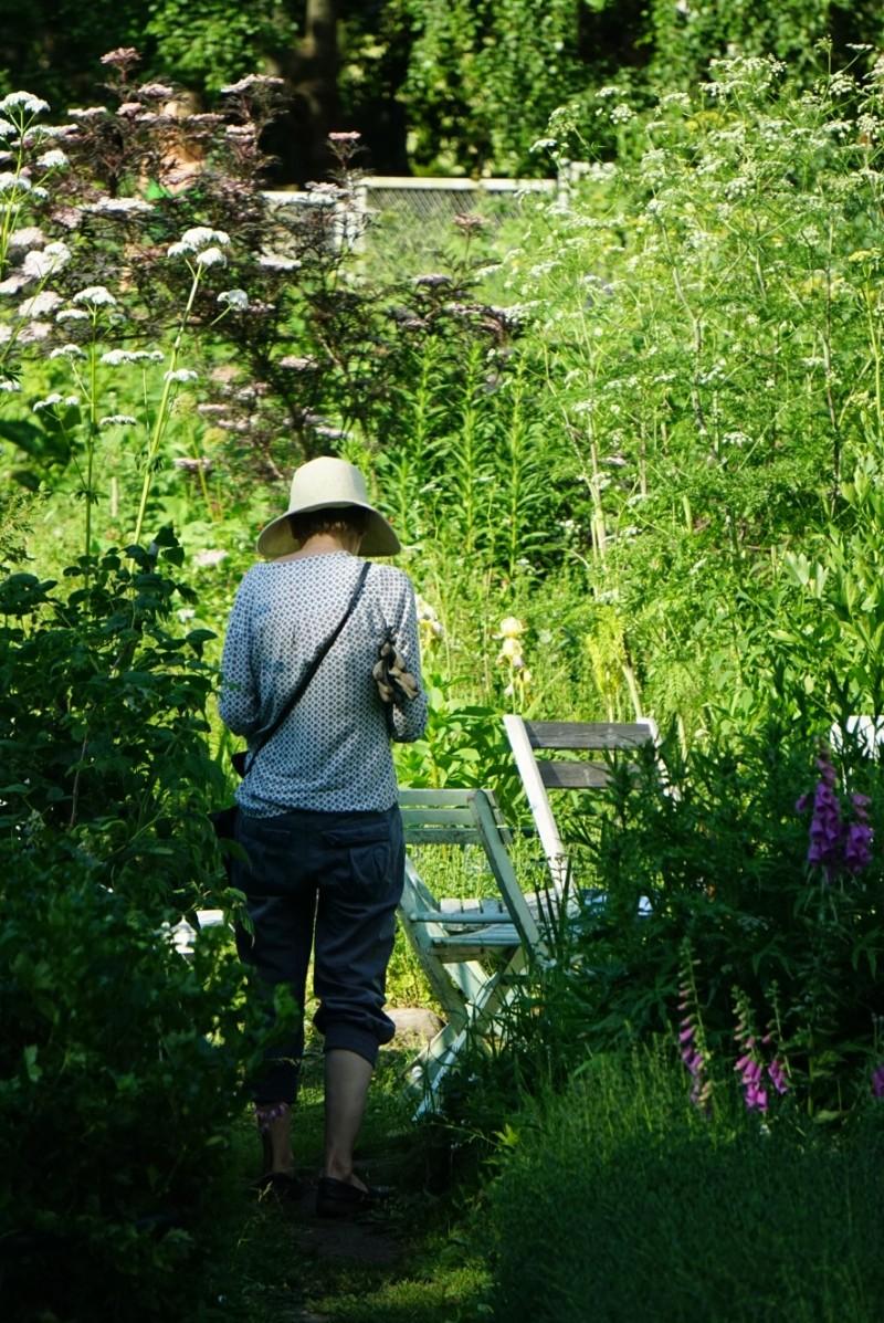 Lapinlahden puutarha Helsinki