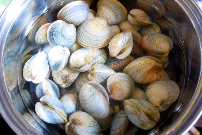 Nettoyer, dessabler ou dégorger des coquillages, dessaler des moules