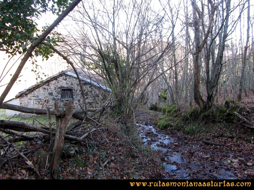 Ruta Tromeu y Braña Rebellón: Cabaña y camino embarrado
