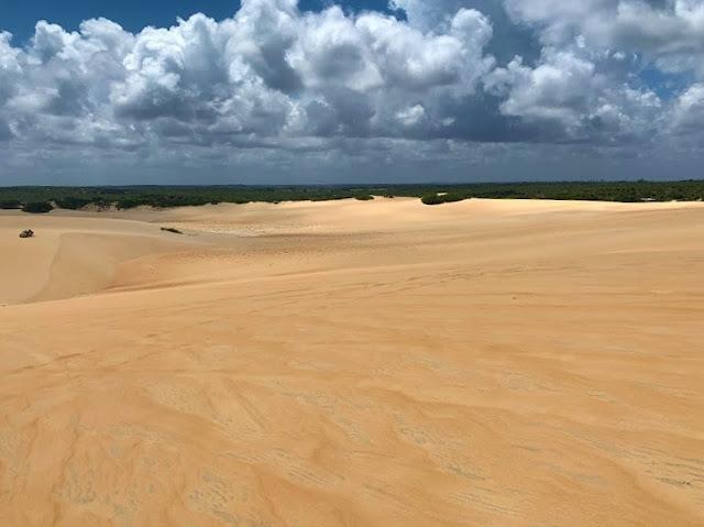 dunas de areia douradas