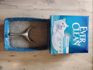 ماهي انواع رمال القطط واهم انواع رمل القطط