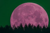 Nanti Malam Akan Terjadi Bulan Purnama Strawberry dan Gerhana Bulan Penumbra