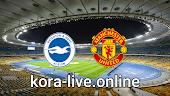 مباراة مانشستر يونايتد وبرايتون بث مباشر بتاريخ 04-04-2021 الدوري الانجليزي