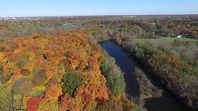 5 Parks in the Lansing Area to View Fall Colors