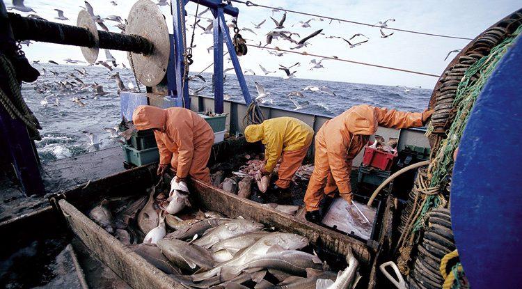 La transformation et la valorisation des produits de la mer en conférence à Agadir