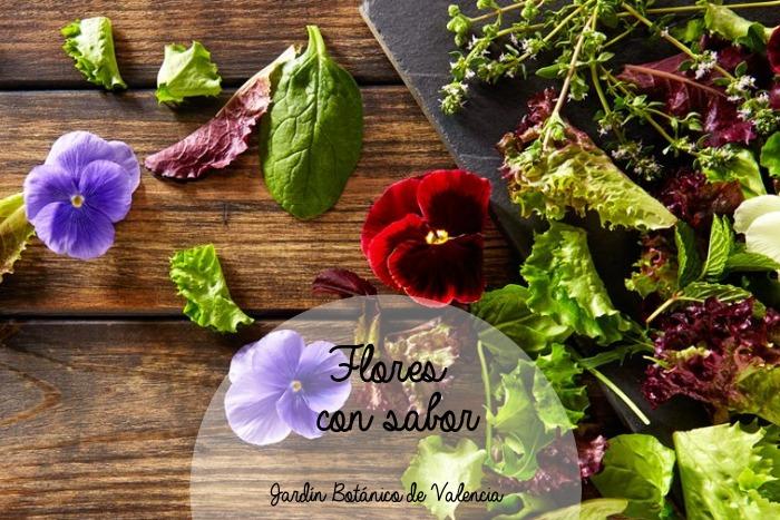 Flores que se comen