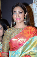 Shriya Saran Looks Stunning in Silk Saree at VRK Silk Showroom Launch Secundrabad ~  Exclusive 074.JPG