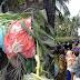(ViraL) Lima Gambar Mayat Separuh Bogel yg Mengerikan, Surut Banjir Dedah Pembunuhan Kejam Wanita OkU