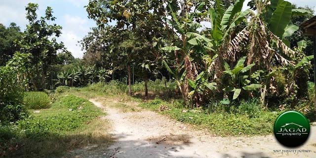 Tanah Murah di Maguwoharjo dalam Ringroad