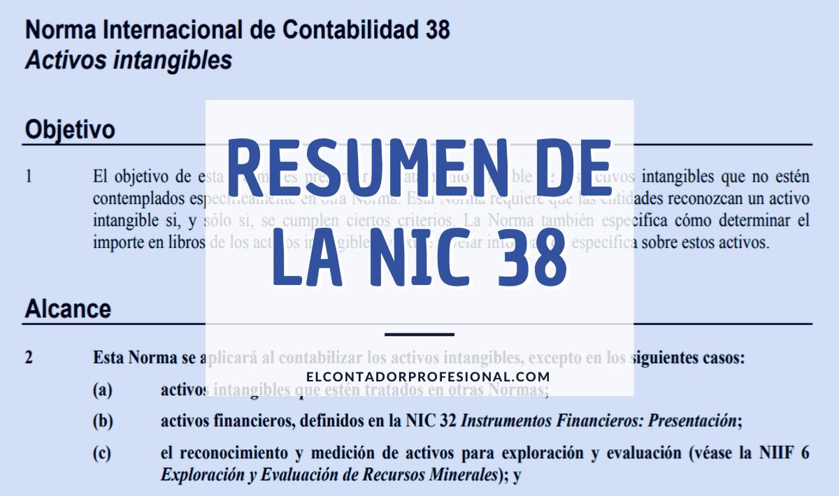 nic 38 resumen