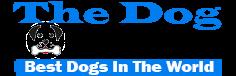 Dog World : Best Dog Breeds of the World