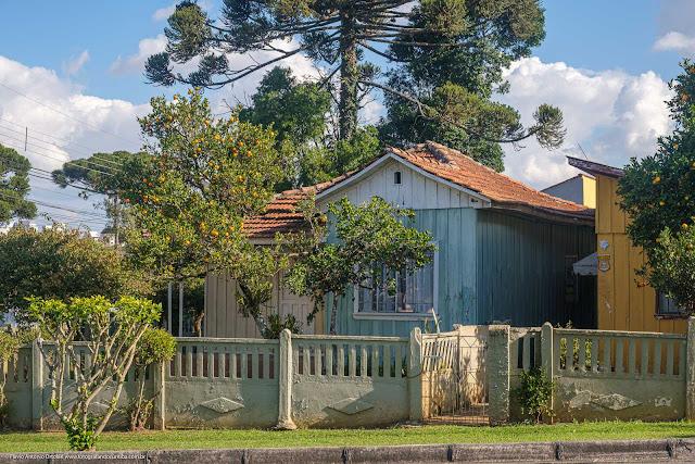 Casa de madeira com capelinha na fachada e um pé de vergamota na frente