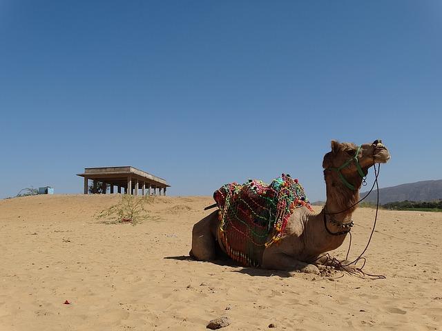 Pushkar Mela   Beautiful Place Of India Pushkar Rajasthan-
